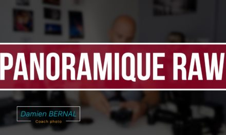 Panorama en RAW avec son Fujifilm ?
